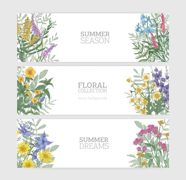 Bündel horizontaler bannervorlagen mit elegant blühenden wilden sommerblumen und platz für text auf weißem hintergrund. sammlung schöner blumenhintergründe. bunte saisonale vektorillustration