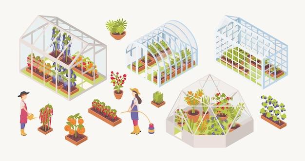 Bündel verschiedener glasgewächshäuser mit pflanzen, blumen und gemüse, die im inneren wachsen, gärtner, landwirte oder landarbeiter einzeln auf weißem hintergrund. bunte isometrische vektorillustration.