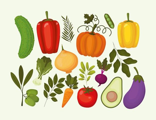 Bündel von gemüsesymbolen auf einem weißen illustrationsentwurf