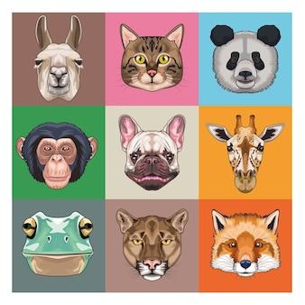 Bündel von neun tieren im inland und wilde ikonenillustration