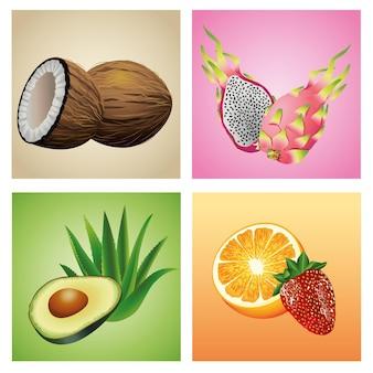 Bündel von sechs tropischen früchten und pflanzen stellte ikonenillustration ein
