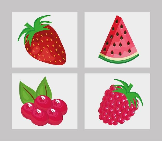 Bündel von vier frischen fruchtikonen-illustrationsdesign