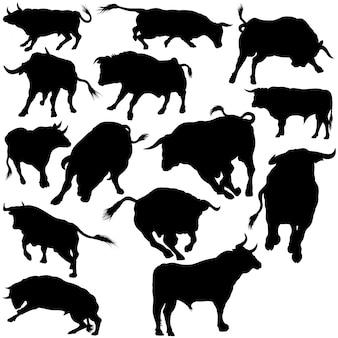 Bull silhouettes collection Premium Vektoren