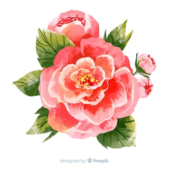 Bunte aquarellkorallenblume