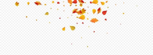 Bunte blatt-vektor-panorama-transparenter hintergrund. waldblumenmuster. herbstliche isolierte laub-karte. saison-textur.
