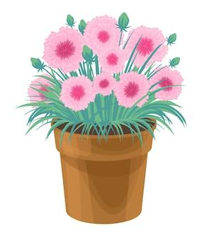 Bunte frühlingsblumen in topfpflanzen für haus- und gartentopfpflanzen