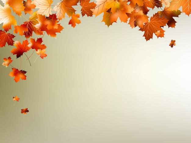 Bunte herbstblätter fallen und drehen sich.