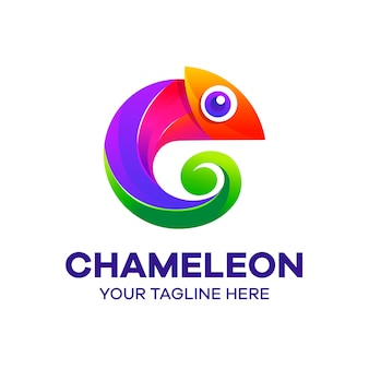 Bunte logo-vorlage des chamäleons