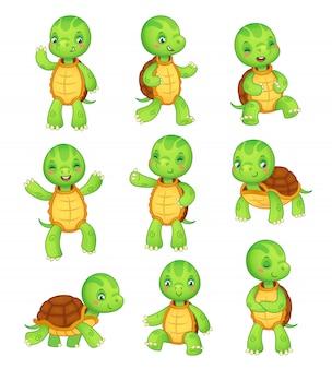 Bunte lokalisierte charaktervektor-tierillustrationssammlung der schildkröte