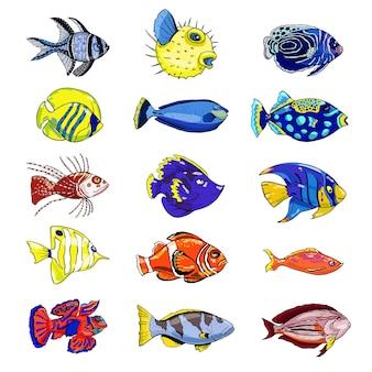 Bunte reihe von exotischen fischen auf weißem hintergrund hand gezeichnete vektorillustration