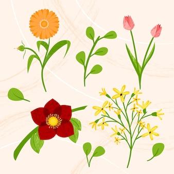 Bunte sammlung von frühlingsblumen