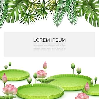 Bunte schablone der realistischen tropischen pflanzen mit blühendem lotusblumenmonstera und palmblattrahmen