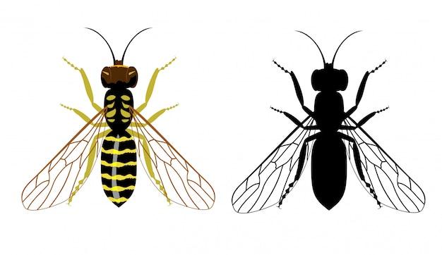 Bunte und schwarze silhouette der wespe auf einem weißen hintergrund. illustration von fliegenden insekten.