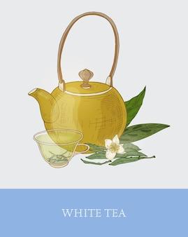Bunte zeichnung der teekanne, der glasschale mit dem durchtränkten weißen tee, den frischen blumen und den blättern auf grau
