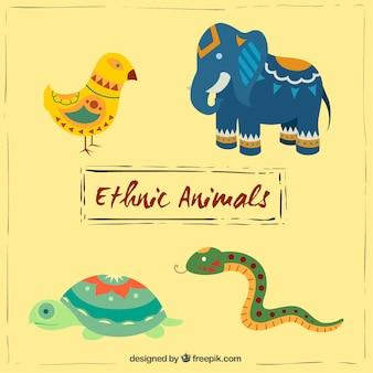 Bunten ethnischen tiere