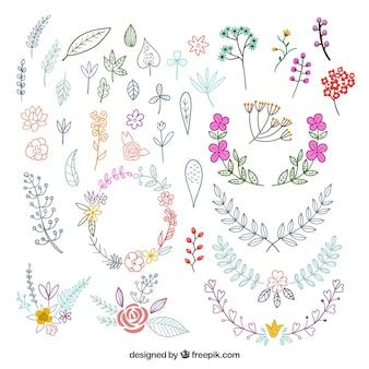 Bunter satz hand gezeichnete florenelemente