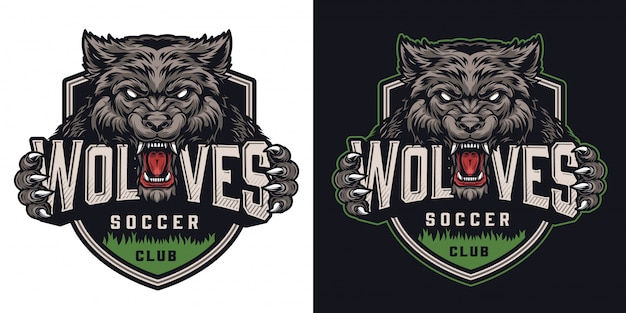 Buntes fußballverein-logo