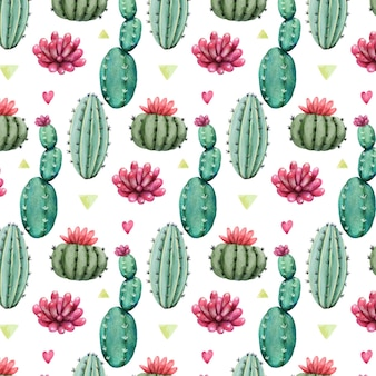 Buntes muster mit kaktuspflanzen