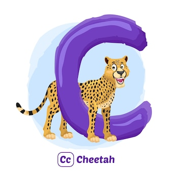 C für geparden. illustrationszeichnungsstil des alphabet-tieres für bildung