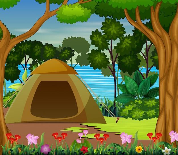 Campingzone auf der schönen landschaft