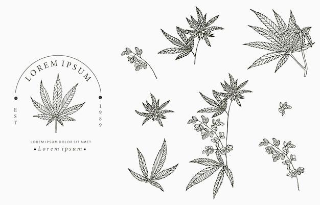 Cannabis-sammlung.