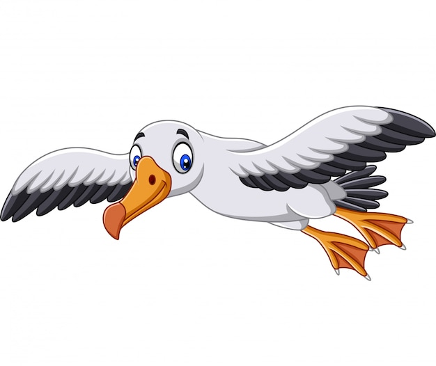 Cartoon albatros fliegen