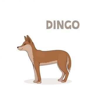 Cartoon dingo isoliert auf weißem hintergrund