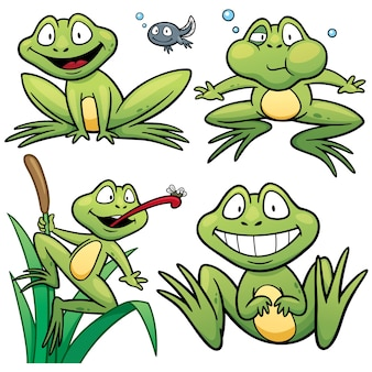 Cartoon Frosch Charakter