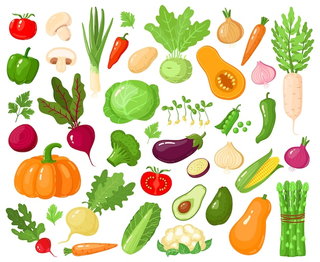 Cartoon gemüse. veganes gemüse essen, tomate, kürbis, zucchini und karotte, vegetarisches frisches rohes gemüse illustrationsikonen gesetzt. vegetarische zucchini und karotte, kürbisgemüse