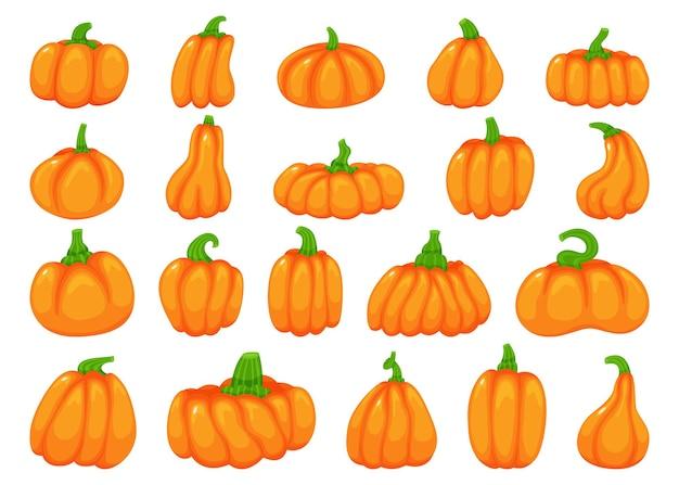 Cartoon-halloween-kürbis fallen traditionelles orangefarbenes herbstelement-vektorset