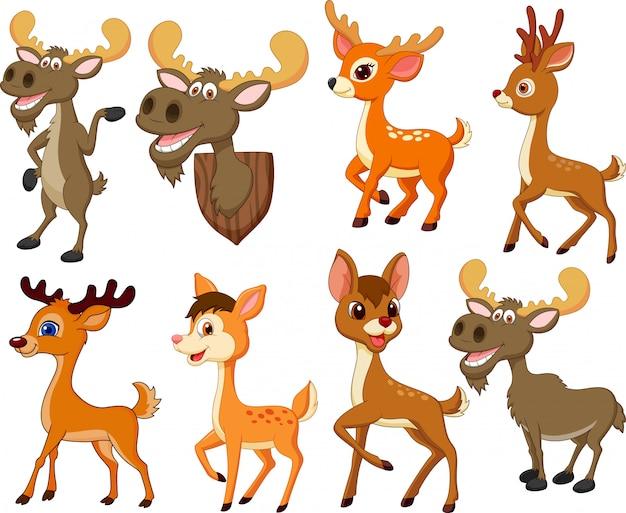 Cartoon hirsch und elch sammlung