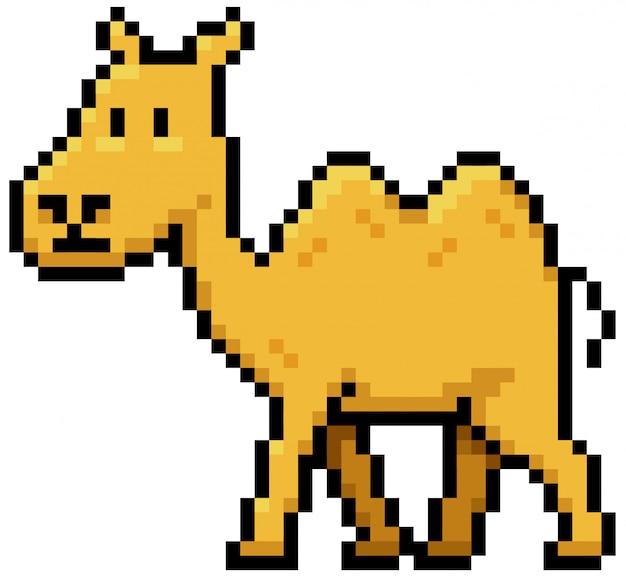 Cartoon kamel pixel design