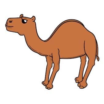 Cartoon-kamel