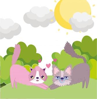 Cartoon katzen schöne maskottchen in gras himmel haustiere