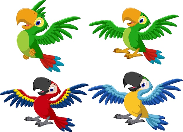 Cartoon macaw sammlungssatz