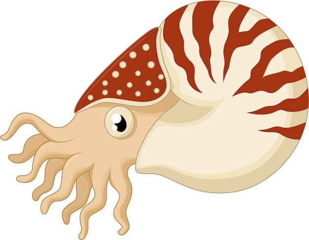 Cartoon nautilus