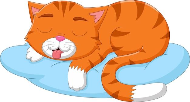 Cartoon niedliche katze, die auf kissen schläft
