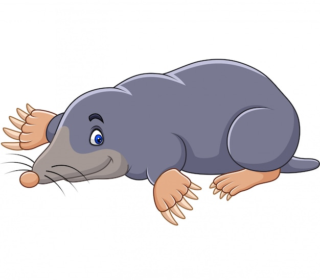 Cartoon niedlichen maulwurf
