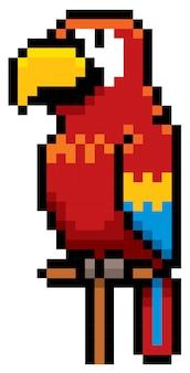 Cartoon papagei pixeldesign