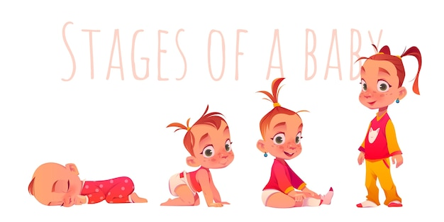 Cartoon-stadien eines babys