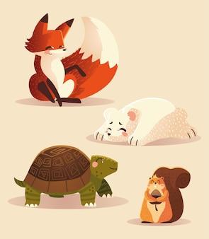Cartoon tiere fuchs schildkröte eichhörnchen und eisbär tierikonen vektor-illustration