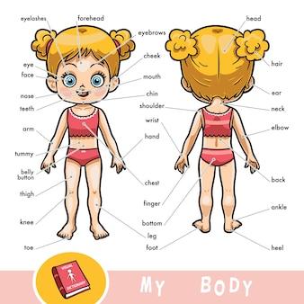 Cartoon visuelles wörterbuch für kinder über den menschlichen körper. meine körperteile für ein mädchen.
