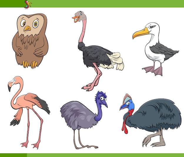 Cartoon vögel arten tier zeichen gesetzt