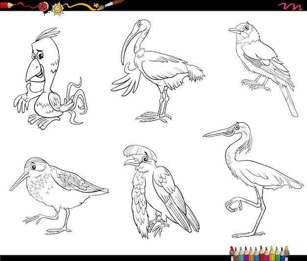 Cartoon vögel tiere charaktere set malbuchseite