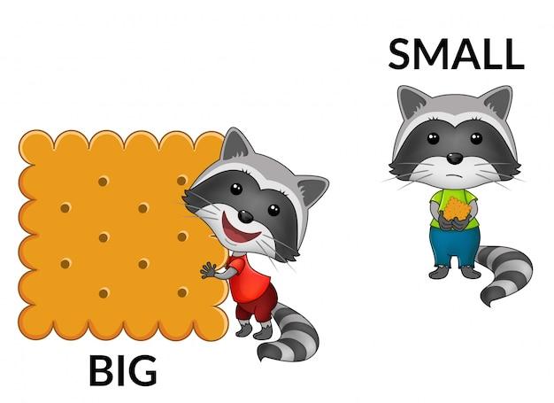 Cartoon waschbären.