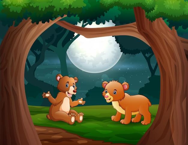 Cartoon zwei bären im dschungel bei nachtillustration
