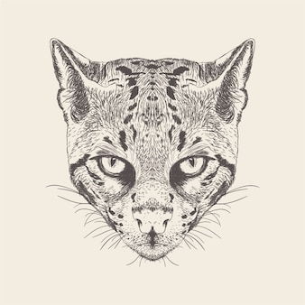 Cat illustration der hand gezeichneten auslegung.