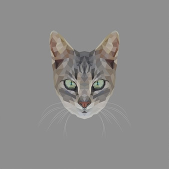 Cat low poly