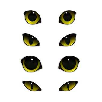 Cats eyes realistic set