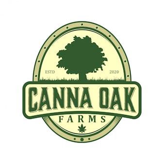 Cbd cannabidiol-logo für legale behandlung, wirkstoffpflanze, wachsendes unternehmen.